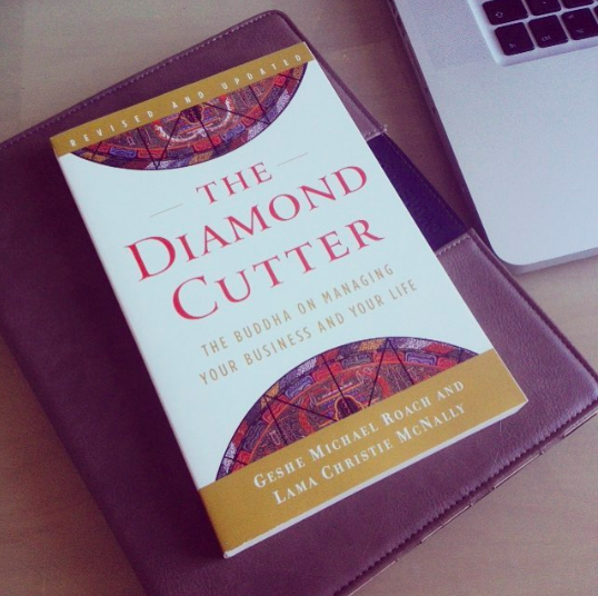 The Diamond Cutter book image